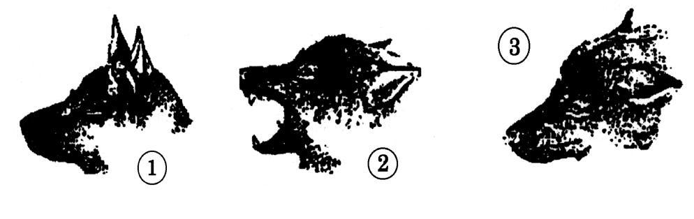 Sachkundenachweis gemäß § 3 Abs. 2, Abs. 3 und § 10 Abs. 1 LHundG NRW
