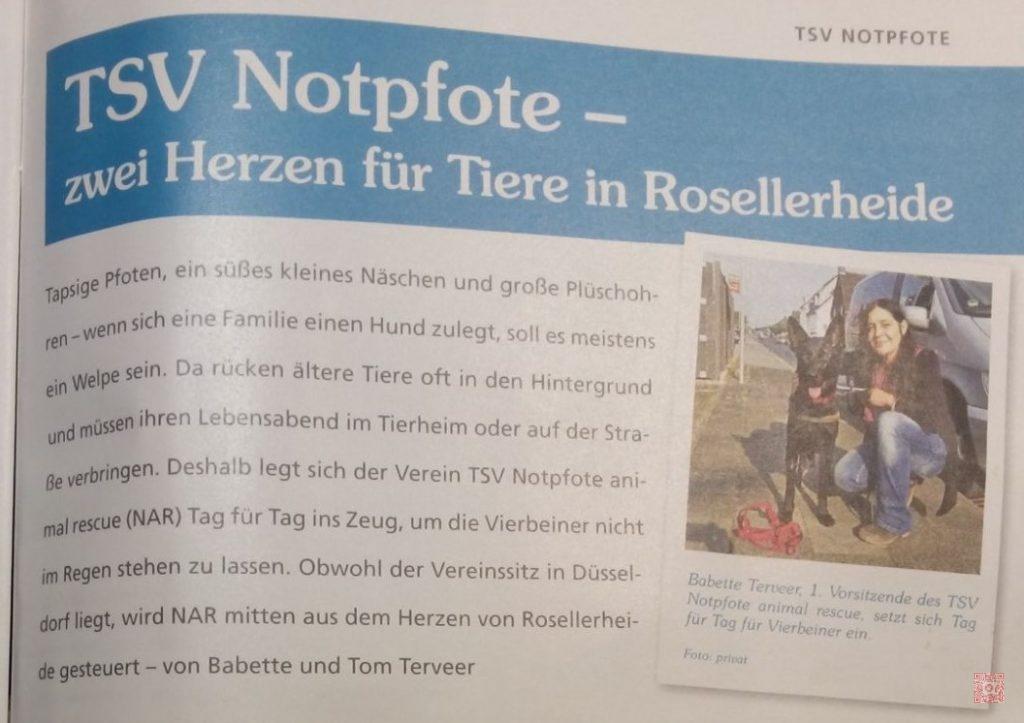 NAR Norfbach 1