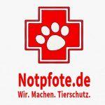 Download https://notpfote.de/files/2018/12/NAREV-Logo-Machen.jpg
