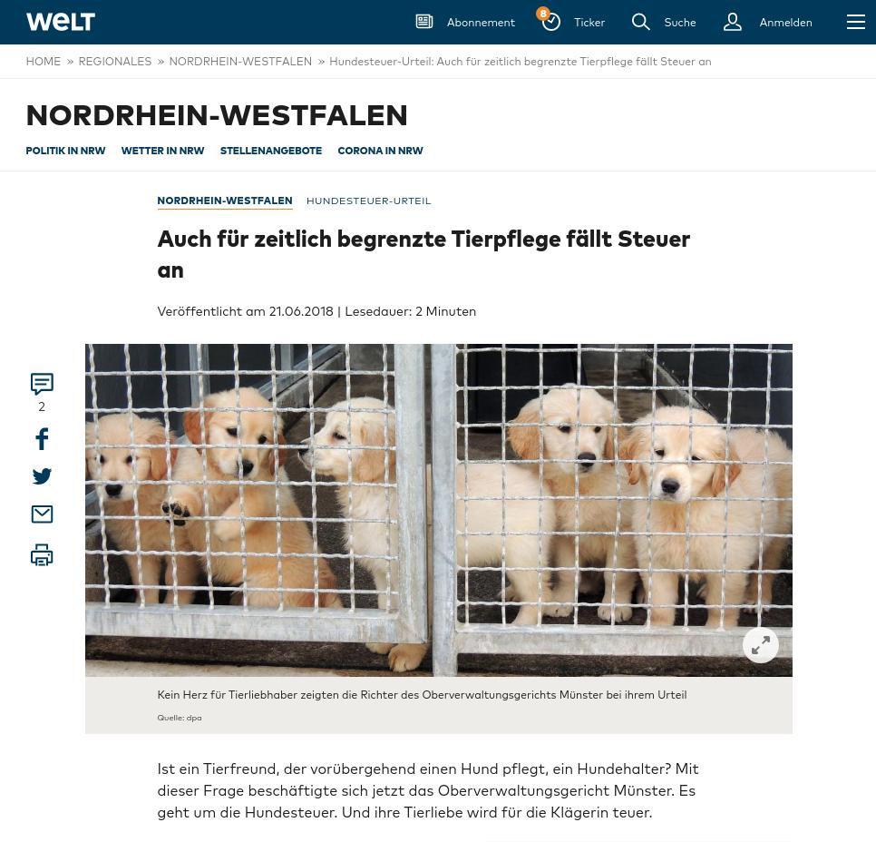 """Die Zielrichtung des Vereins Notpfote Animal Rescue e.V., der Hunde aus dem Ausland nach Deutschland hole, sei aber eine andere, sagte Schneider. """"Die Stadt ist selbstverständlich nicht verpflichtet, das zu fördern."""""""