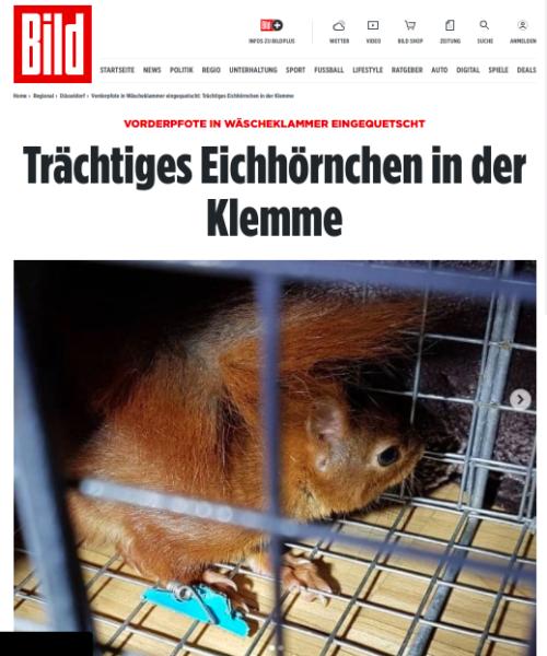 BILD-Zeitung, Von: CHRISTOPH WITTE UND ANJA TISCHENDORF 31.01.2021