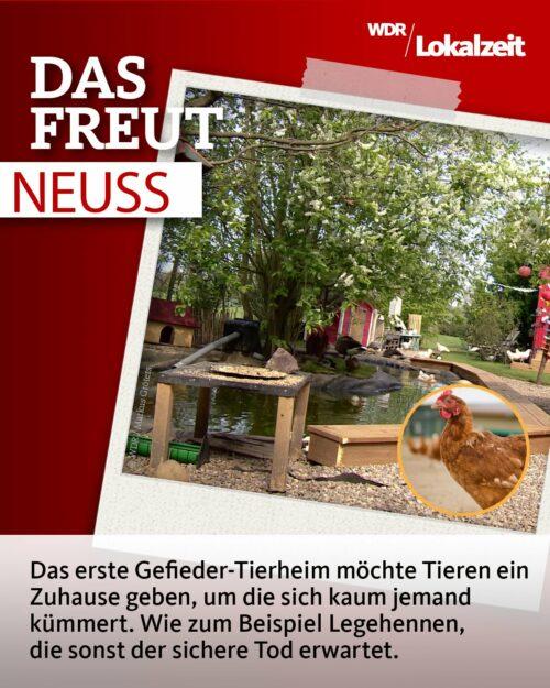WDR Lokalzeit Teaser