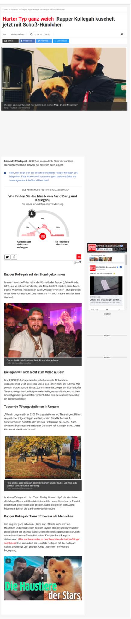 Rapper Kollegah kuschelt jetzt mit Schoß-Hündchen